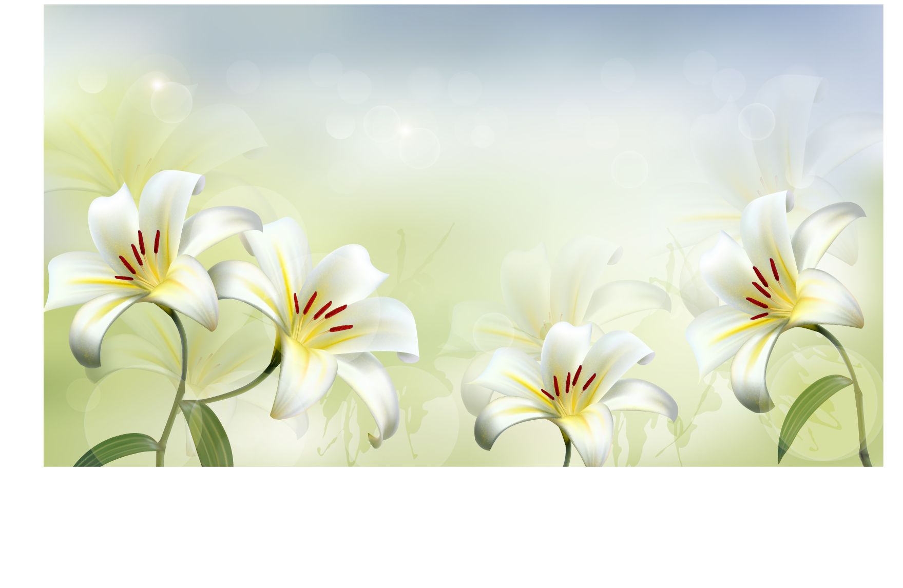 Beautiful white flower vector background 02 free vector downloads beautiful white flower vector background 02 free vector downloads site give mightylinksfo