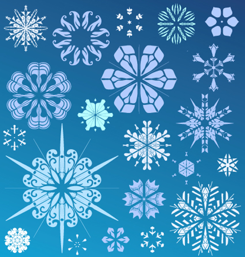 Snowflake holiday vector